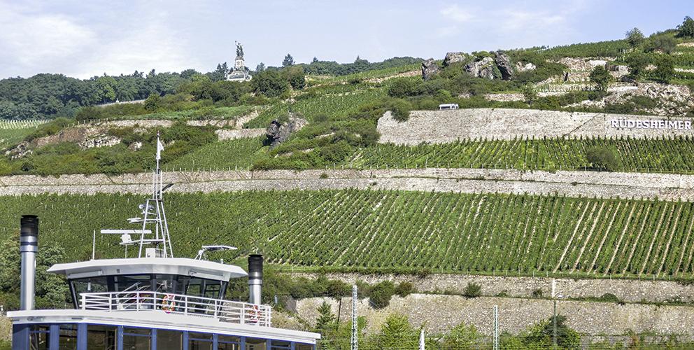 Leitsystem Niederwald